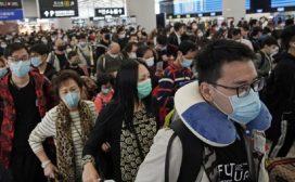 जङ्गली जीवजन्तुको अवैध शिकारले चीनमा कोरोना जीवाणु फैलिएको आशंका